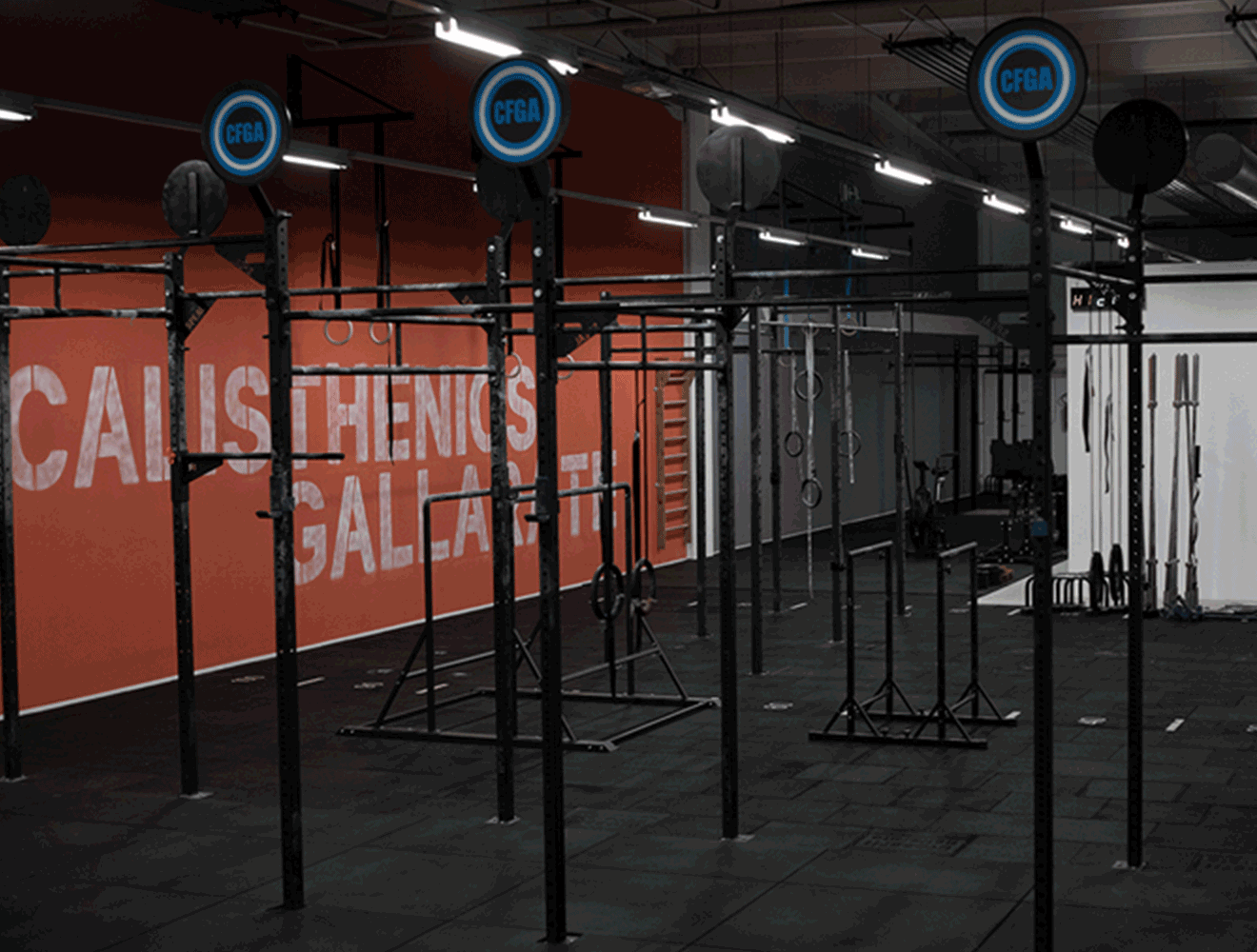 Crossfit Gallarate - Il Box02